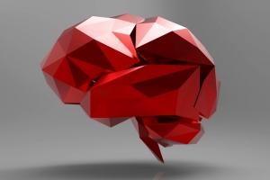 Zdjęcie Neurobiopsychologia